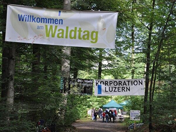 Willkommen am Waldtag
