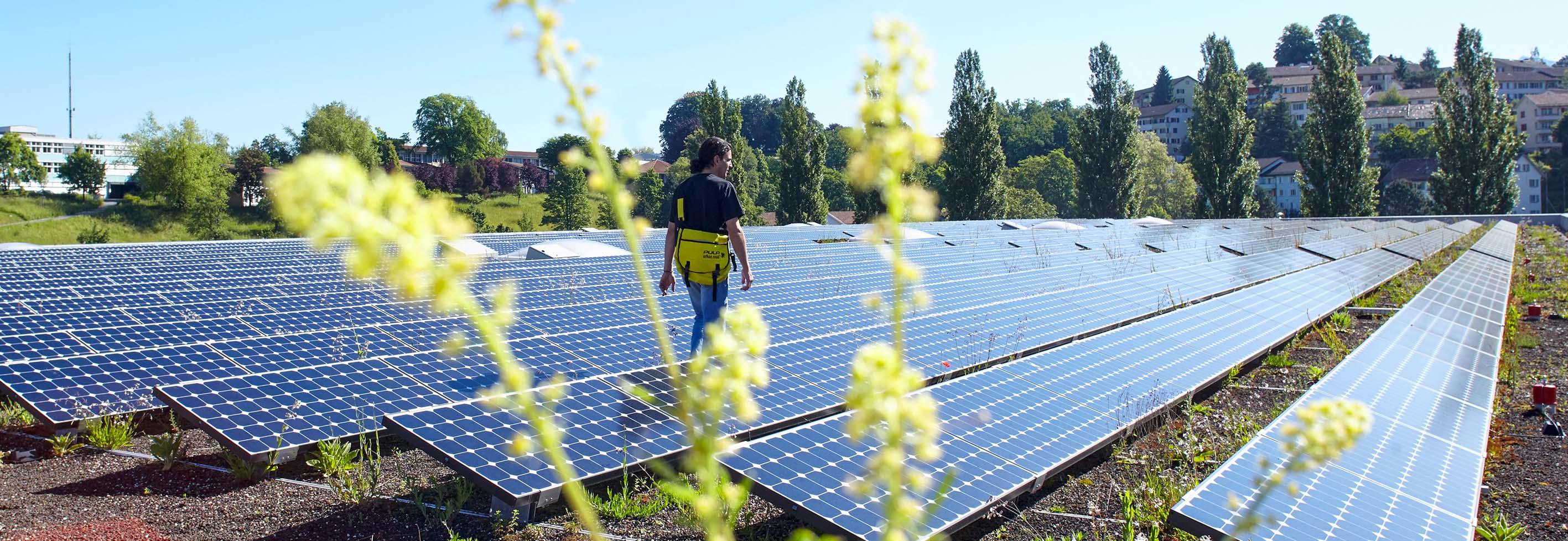 Impuls Umwelt: Beratungsangebot für KMU in der Stadt Luzern