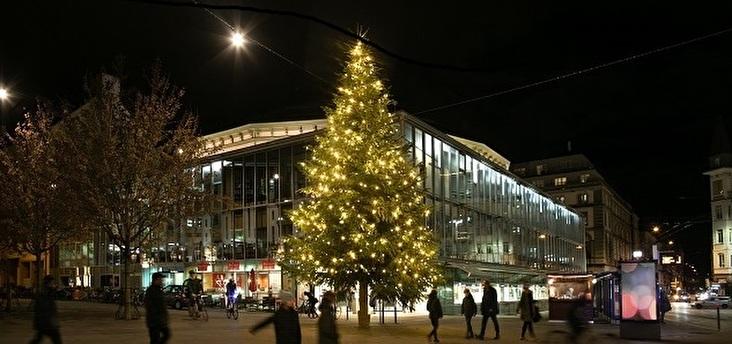 Baum L?wen 2010