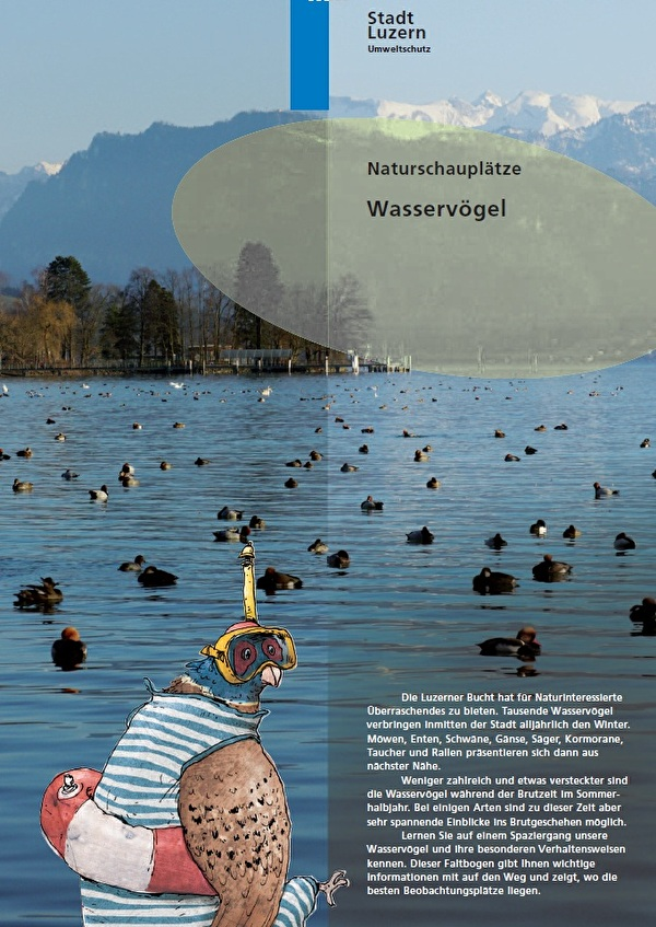 Titelbild Naturschauplätze Wasservögel
