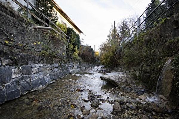 Bild Hochwasserereignis 2017 am Brendenbach