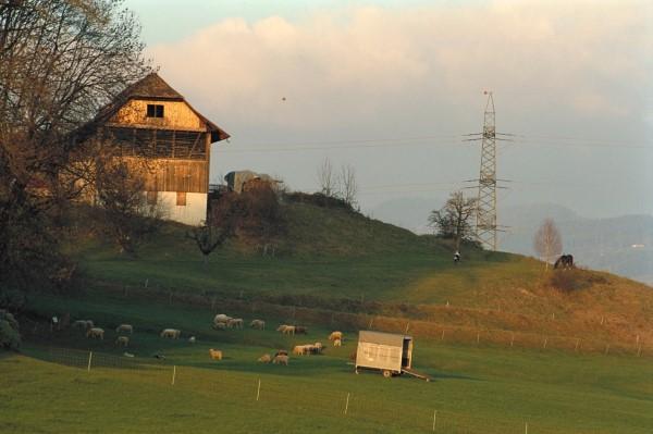 Landwirtschaftsprojekt