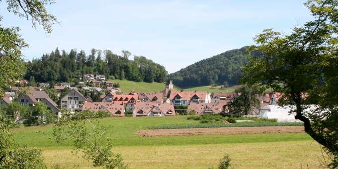 Landschaftssaufnahme Dorf Bäretswil