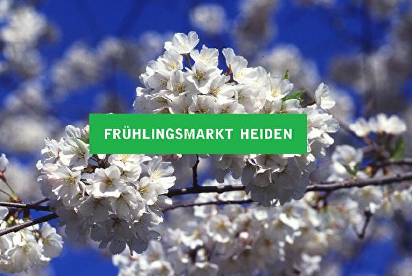 Markt im Frühling