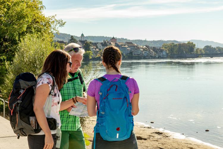 Wandern am Rhein