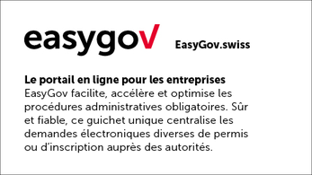 easygov.swiss