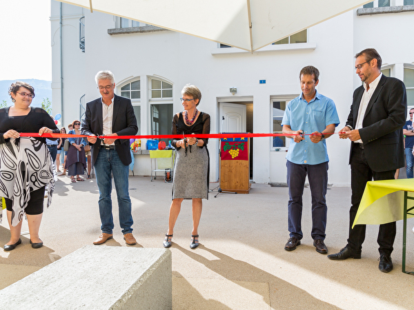 Inauguration structures et CMSS