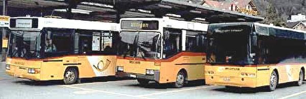 Ortsbus