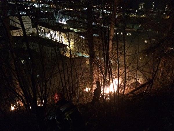 Brennendes Waldgebiet.