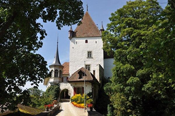 Schloss (Foto Franziska Ryter 2012)