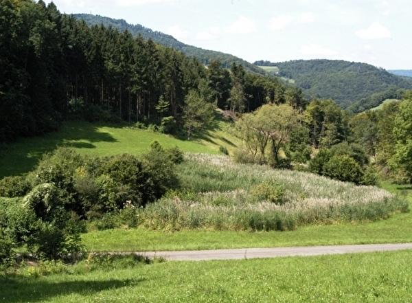 Schutzgebiet Feret