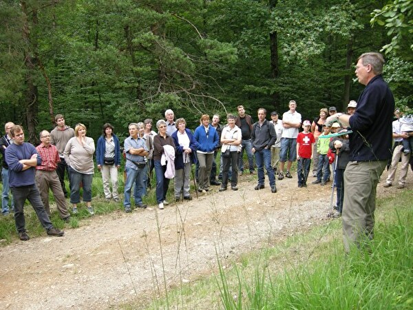 Interessierte Zuhörerinnen und Zuhörer beim Waldrundgang