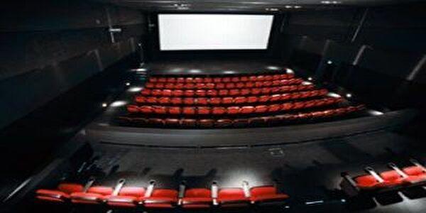 Kino Monti Frick