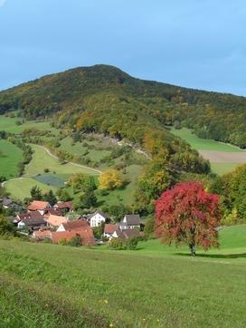 Dorf Asp