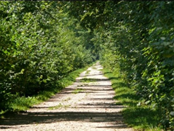 Kanaluferweg