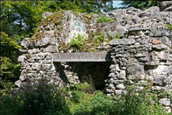 Ruine Burg Göskon