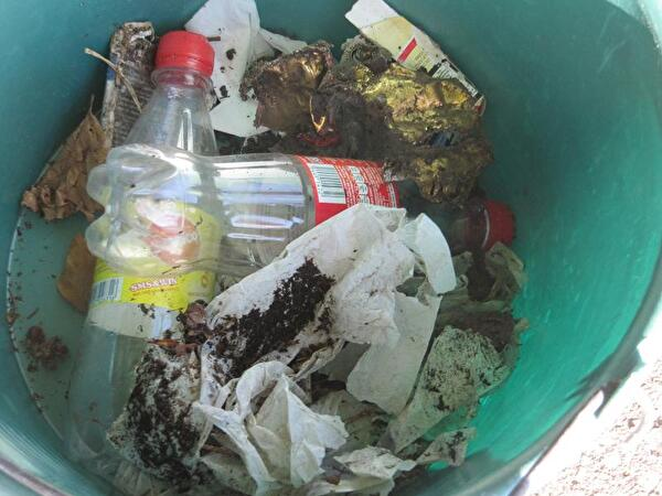 Abfall aus dem Wald im Abfalleimer