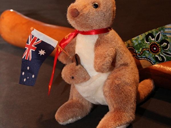 Plüsch-Kanguru mit Australienfahne