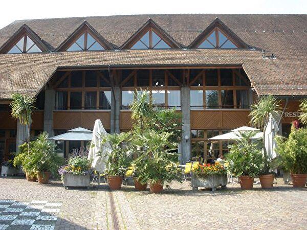 Gartenrestaurant mit Palmen