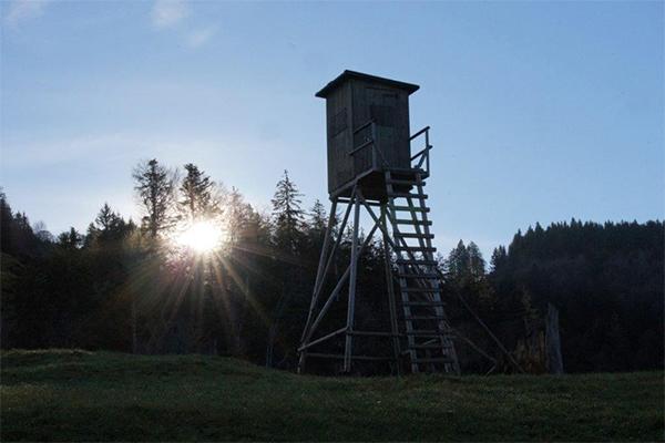 Jägersitz am Waldrand