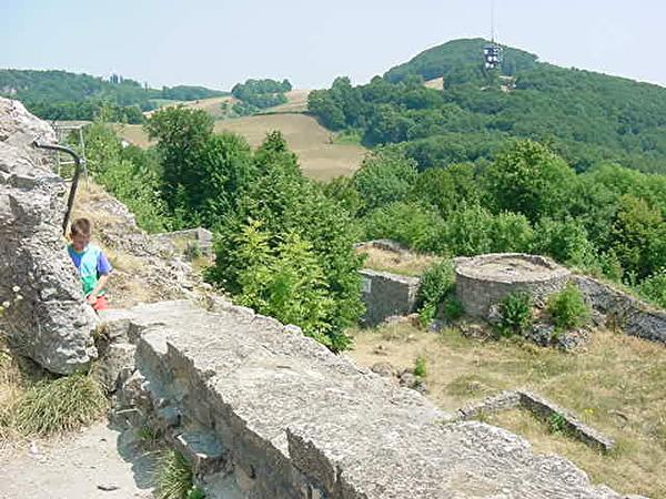 Ruine Frohburg