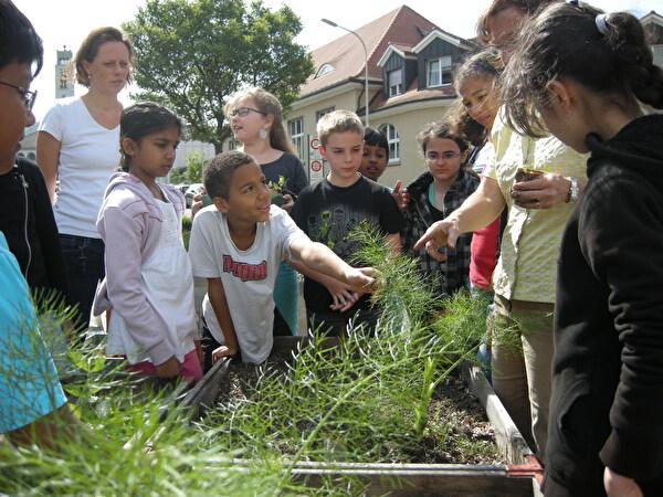 Bepflanzung Stadtgmües durch Schulkinder
