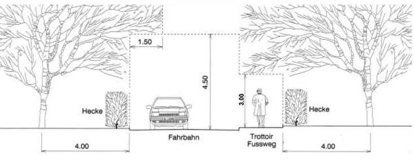 Rückschnitt Bäume und Sträucher