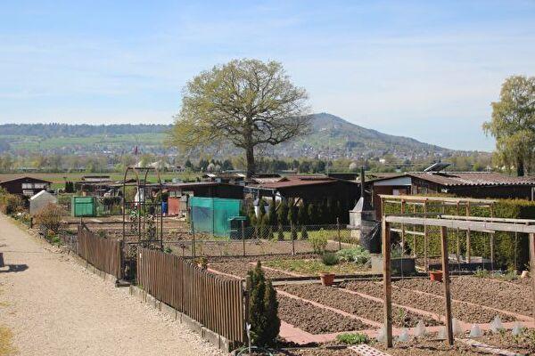 Familiengärten Ehrli