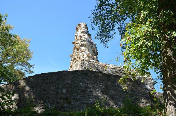 Burgruine Tegerfelden