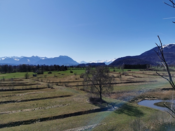 Naturschutzgebiet Bannriet-Spitzmäder