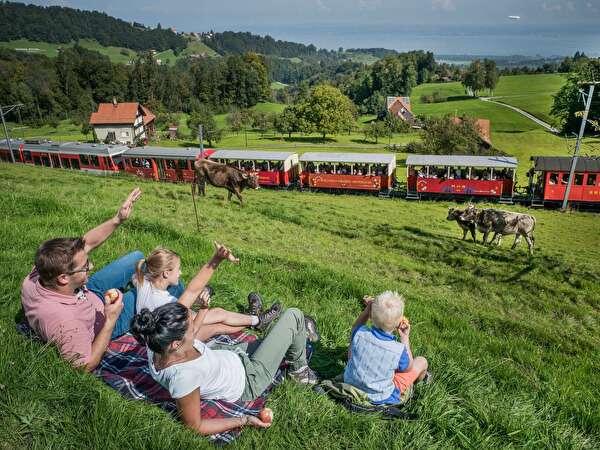 Foto Heidenerbahn
