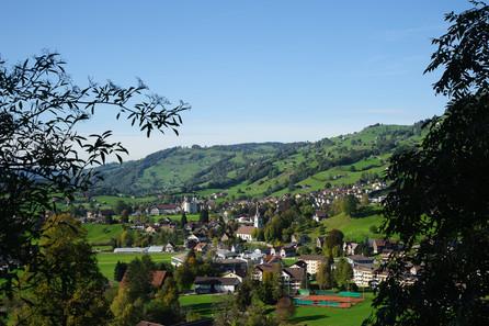 Blick auf die Gemeinde Nesslau
