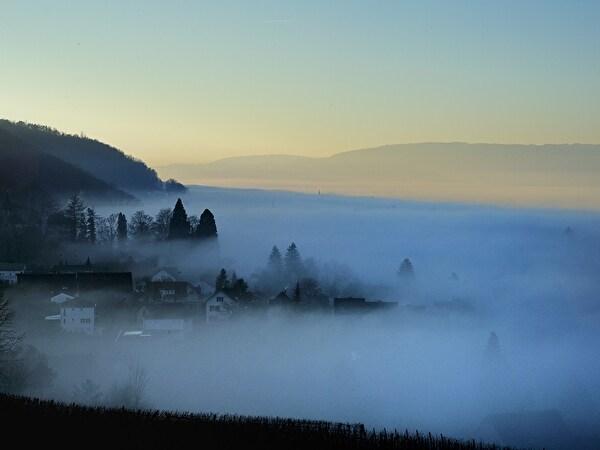 Mannenbach im Nebel