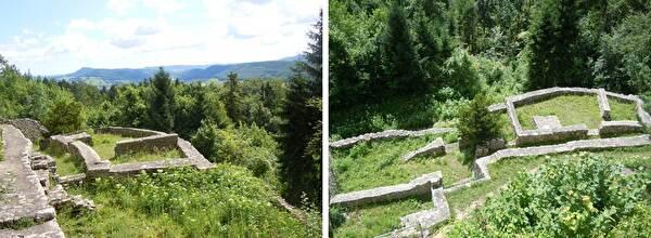 Ruinenmauern umgeben von Gras und Wald