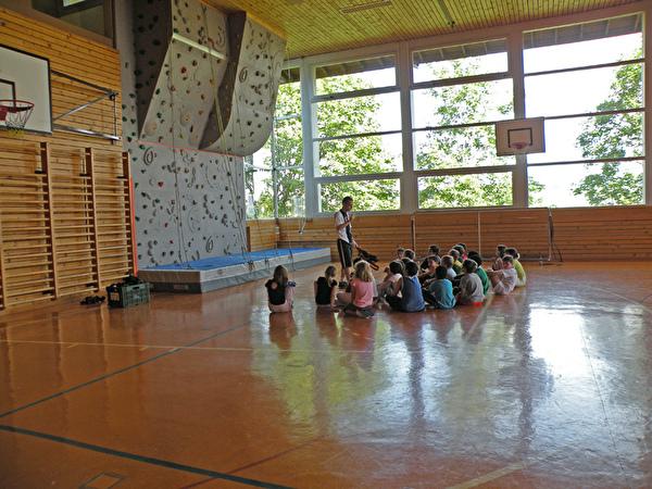 Halle gym Avoines