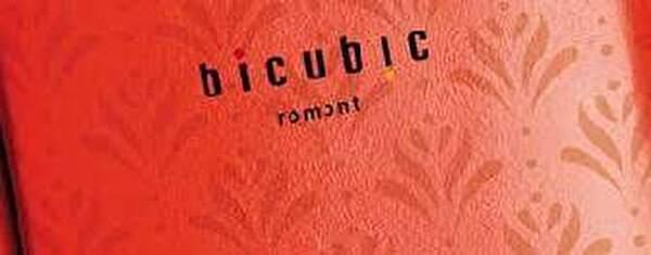 logo Bicubic saison culturelle 2021-2022