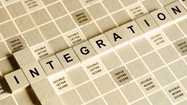 Berufliche und soziale Integration