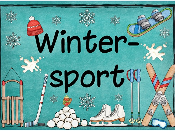 Dis da sport d'inviern 2017