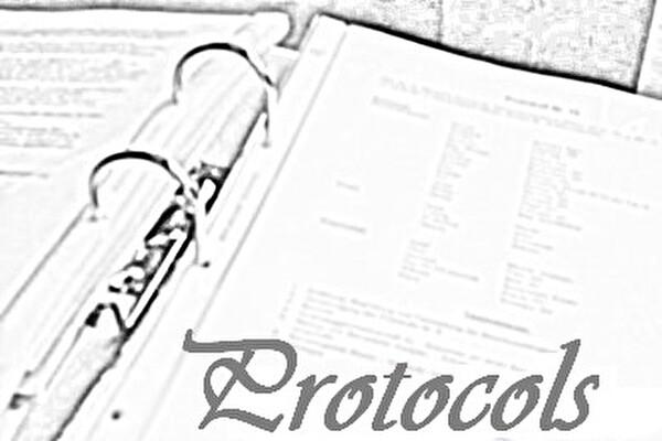 Protokolle