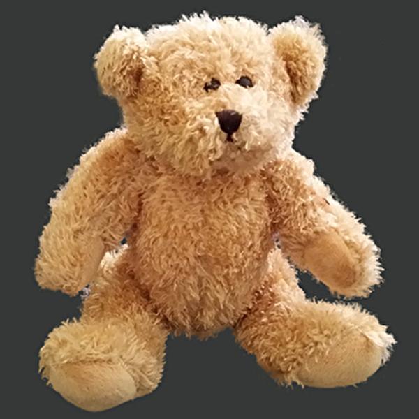 Bärennachmittag