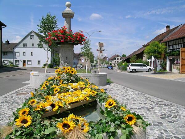 Dorf Wiesendangen