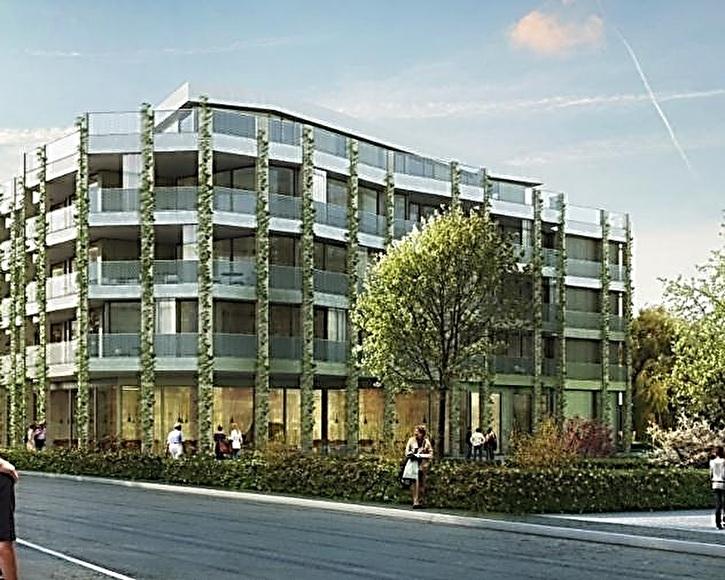 Wohnungen WPZ Blumenrain