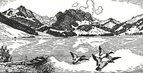 Schwarzsee-Stich