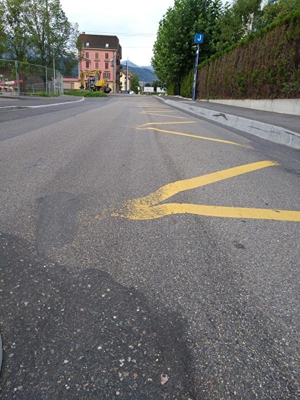Belagsarbeiten Hochdorferstrasse