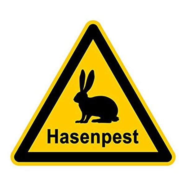 Hasenpest