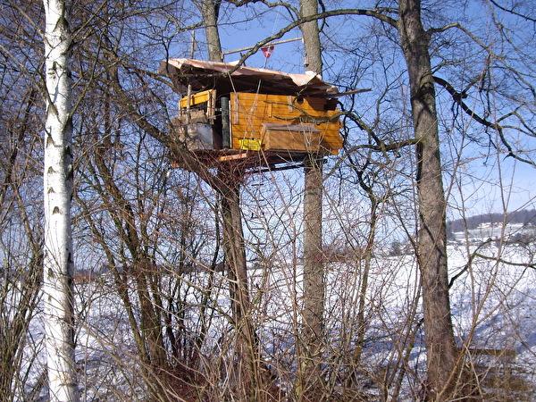© BENI FEDERER - Baumhütte am Haselbach 28.01.2006