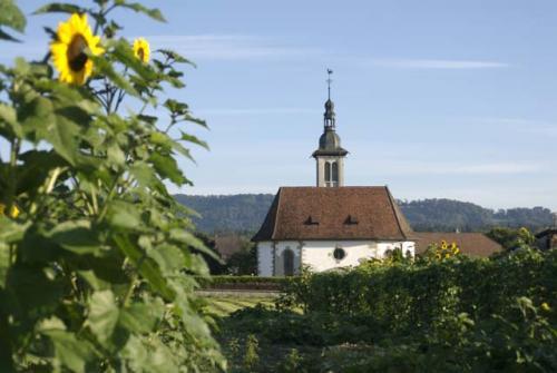 Othmarsingen, unser Dorf