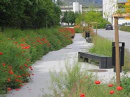 L'Avenue du Bietschhorn