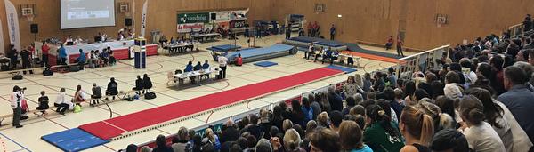 Salles de gymnastique