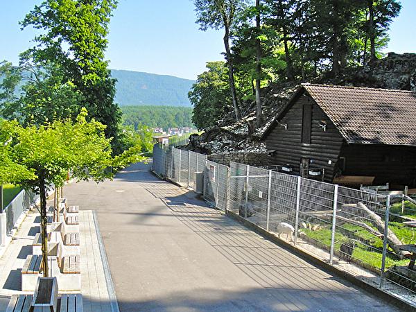 Der Wildpark Mühletäli